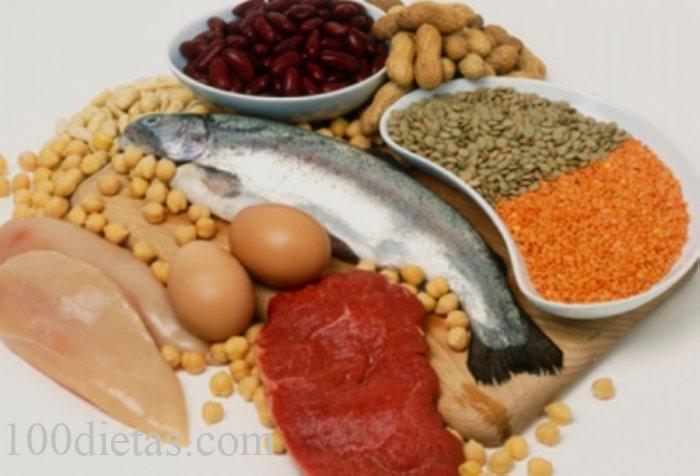 alimentos proteicos dieta kot
