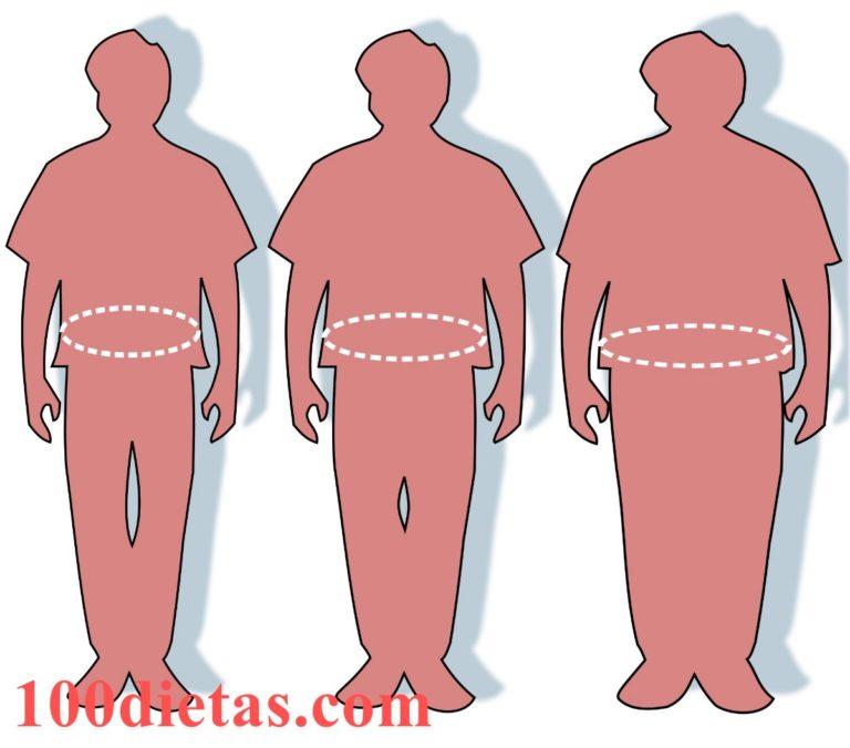 Fases de la Dieta de los Días Alternos